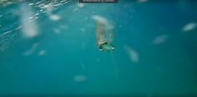 underwater-attacks