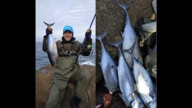 Çanakkale Saroz Yazılı Orkinos Balık Avı – Bol Aksiyon 22 Ocak 2019