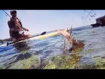 Kalamar avı ve salatası