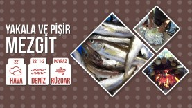 Yakala Ve Pişir Mezgit ( Tava ) | Catch And Cook Whiting Fish