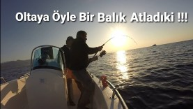 Rekor Kıran Dev Balık Avı / Kılıç Balığı Kaçırdık