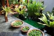 dwibhumi balinese tuin-1