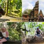 Bali Quad Bike Adventure with Ubud Monkey Forest and Temple