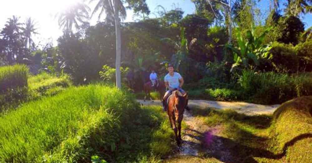 Bali horse riding adventure | Horseback Riding Bali