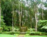bali, botanical garden, kebun, raya, eka karya, bedugul, bali botanical garden, kebun raya, kebun raya bedugul, places, places of interest, flora, conservation