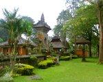 guest house, bali, botanical garden, kebun, raya, eka karya, bedugul, bali botanical garden, kebun raya, kebun raya bedugul, places, places of interest