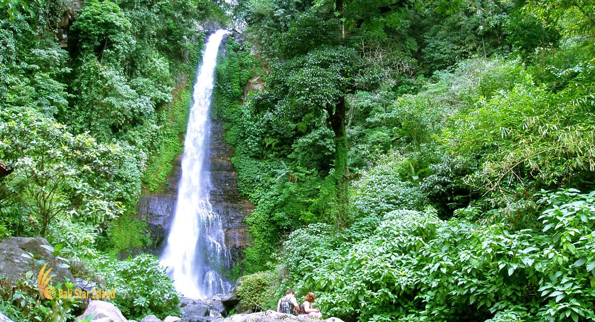 Gitgit Waterfall | North Bali Places of Interest