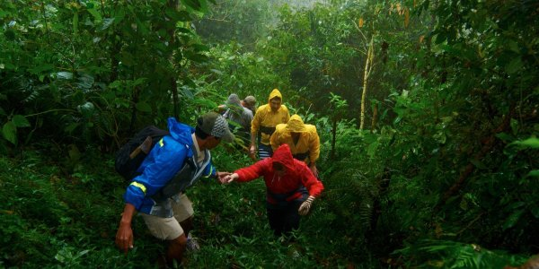 Bali Jungle Trekking – Explore Rain Forest