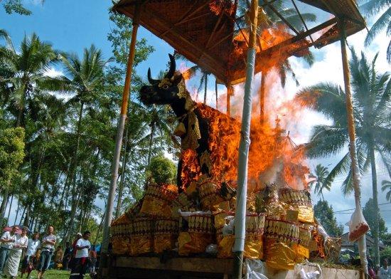 bali, balinese, ngaben, cremation, tours, cremation tour, bali cremation tour, ngaben ceremony, balinese ngaben ceremony, burn dead body