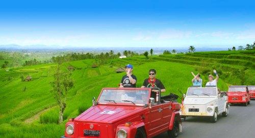 jatiluwih, rice terrace, bali, vw, safari, vw safari, tours, expeditions, bali vw safari, bali vw safari tours, jatiluwih rice terrace