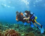 padi, bali, diving, courses, bali diving, bali dive, bali diving courses, open water, open water dive, open water dive course, padi open water dive course