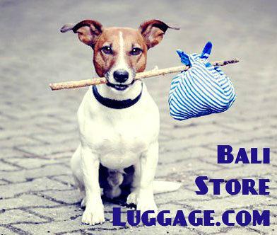 Bali Store Luggage Logo