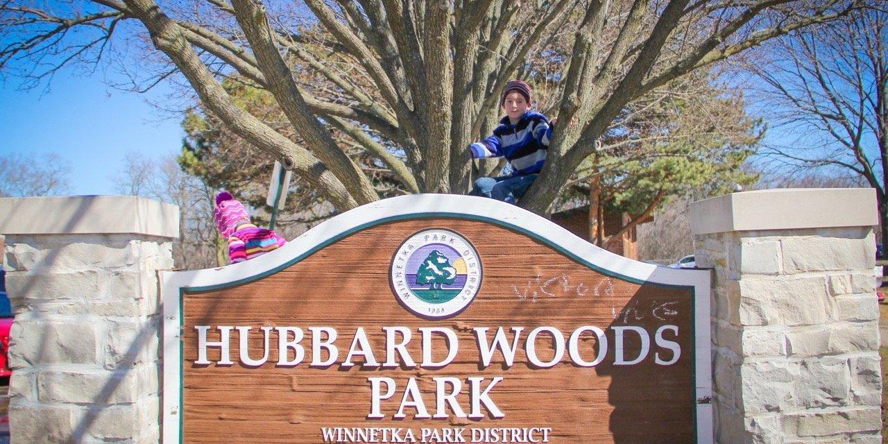Hubbard Woods in Winnetka