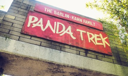 Black & White And Loved All Over…The Panda Trek in San Diego