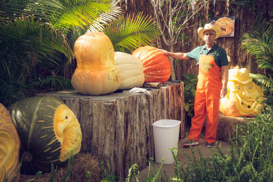 Farmer Mike:  Pumpkin Carving at the State Fair