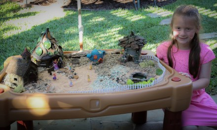My First Fairy Garden…All You Need is a Few Supplies and Your Imagination