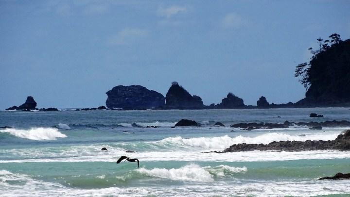Parque Nacional Corcovado,Península de Osa: Cuna de biodiversidad