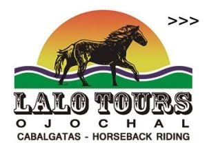 horseback riding, lalo tours ojochal, ballenatales, costaballenalovers, logo, box,