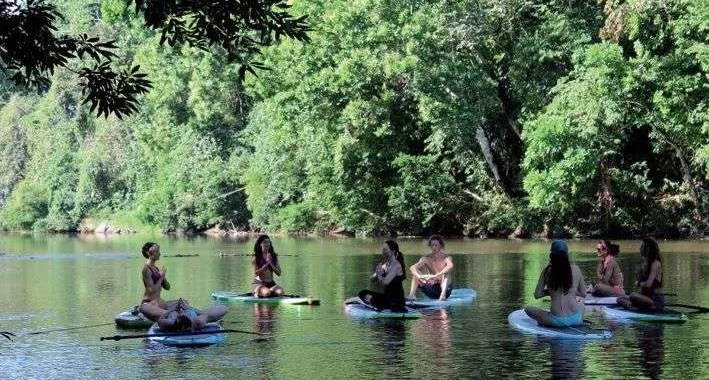 Pineapple Tours, Kayak and SUP