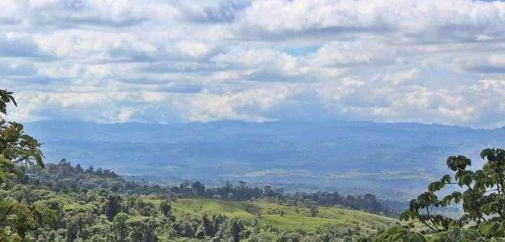The Talamanca Range: a wall and a protective sanctuary - Ballena Tales
