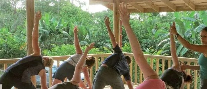 Yoga and Living Sustainably Yoga y vivir sosteniblemente