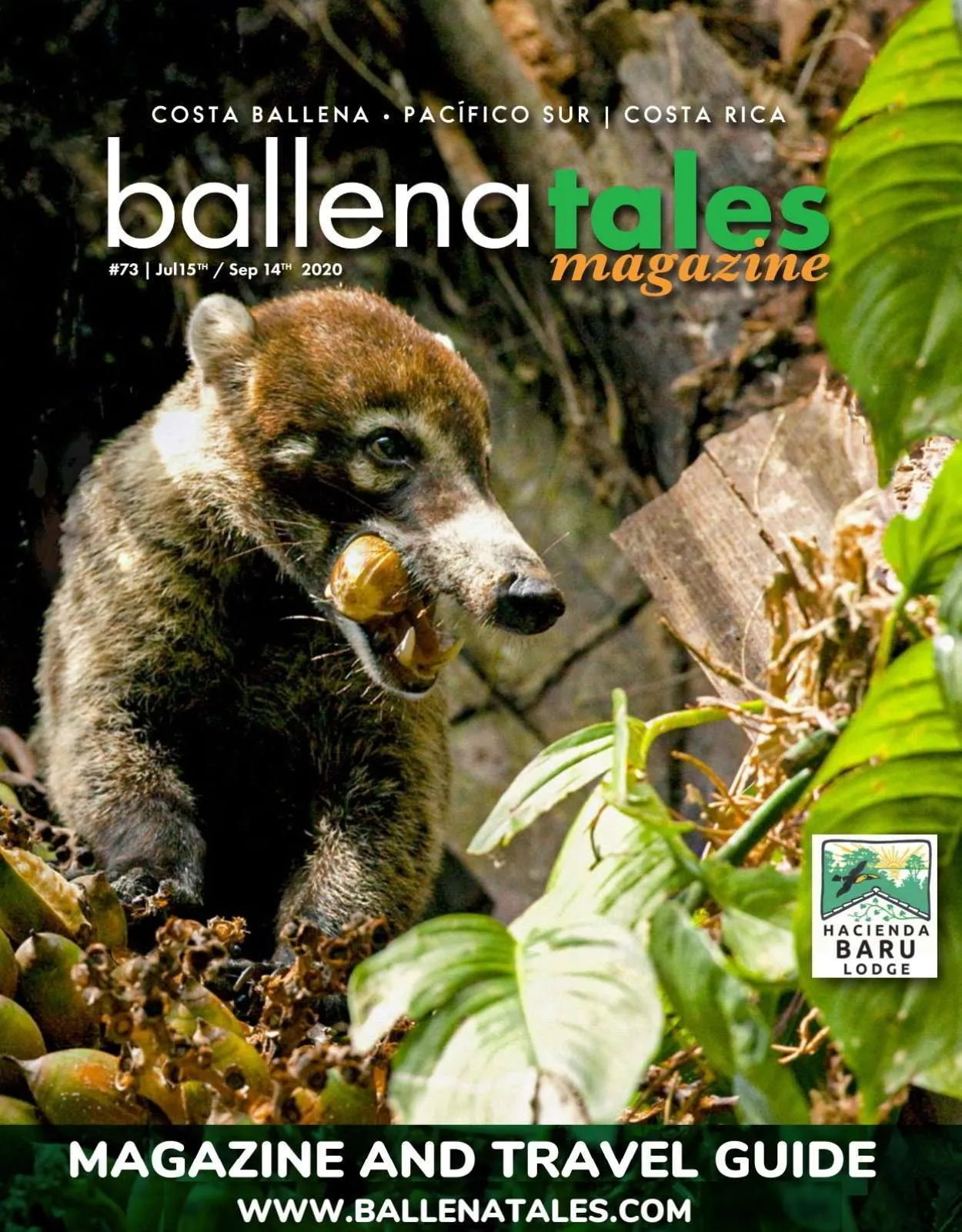 South Pacific Costa Rica Travel Guide #72- birding