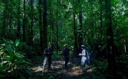 COVIRENAS - protectoras de la biodiversidad 4