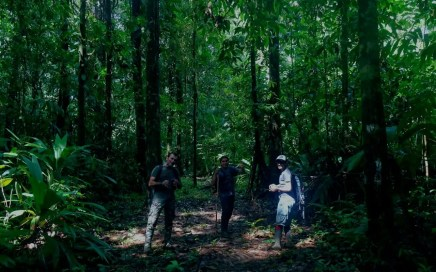 COVIRENAS – Protecting Biodiversity 6