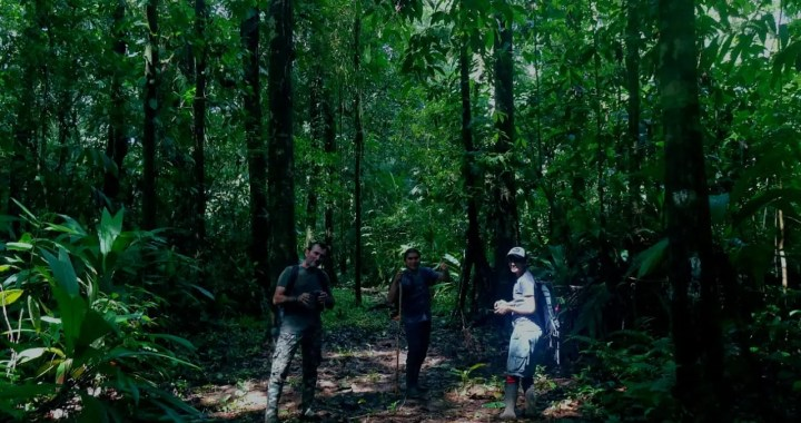 COVIRENAS – Protecting Biodiversity 4