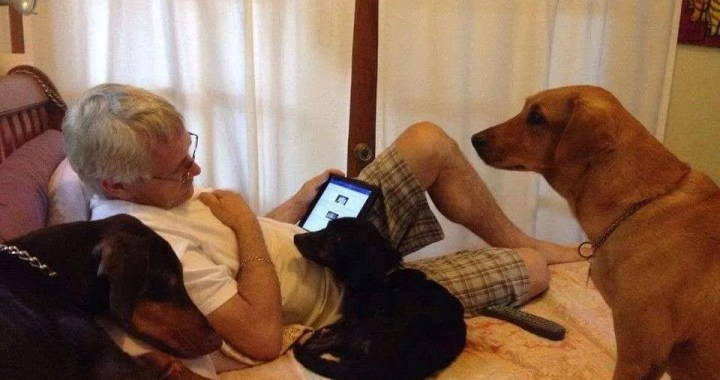 """""""You Might be an Animal Lover If… """" 2"""