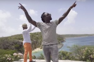 Wale ft. Stokley Williams - The Bloom (Video)