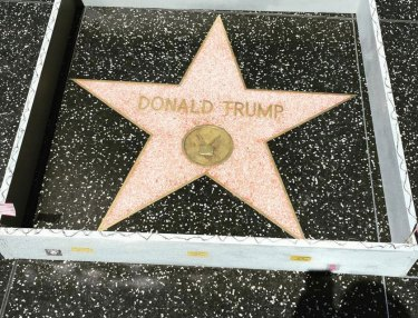 Someone Built a Tiny Wall Around Donald Trump's Star in Hollywood