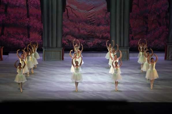 ballet-academy-funcion-fin-19-11