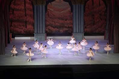 ballet-academy-funcion-fin-19-13
