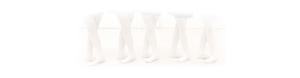 Ballet Source Banner