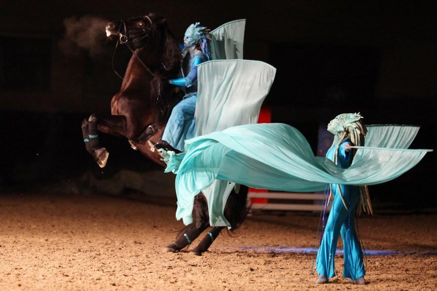 Pferd und Ballett