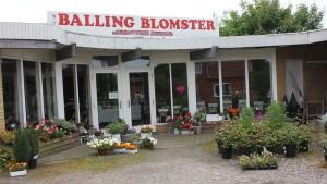 Virk Balling Blomster