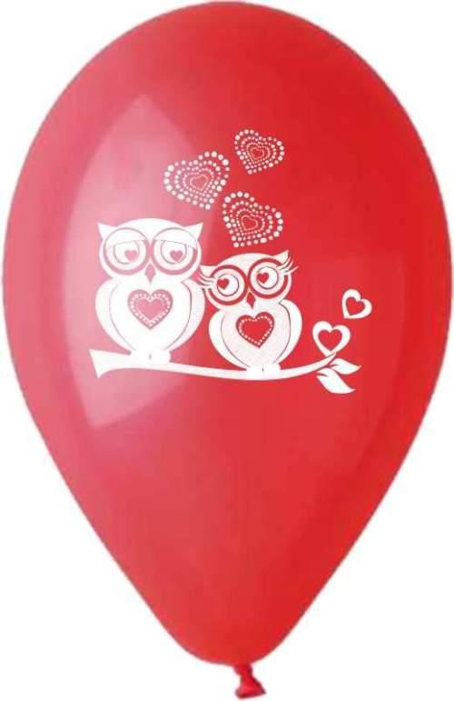 Μπαλόνι τυπωμένο με ερωτευμένες κουκουβάγιες