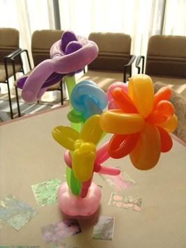 balloon-flowers