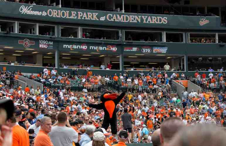 Lower Reserved in Oriole Park