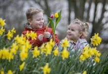 ballymoney-spring-fair-goes-virtual-with-series-of-showcase-short-videos