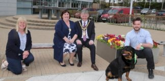 ​sign-up-now-for-causeway-coast-and-glens-borough-council's-green-dog-walkers-scheme