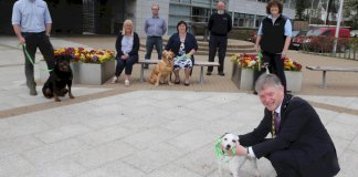 huge-interest-in-causeway-coast-and-glens-borough-council's-green-dog-walkers-scheme