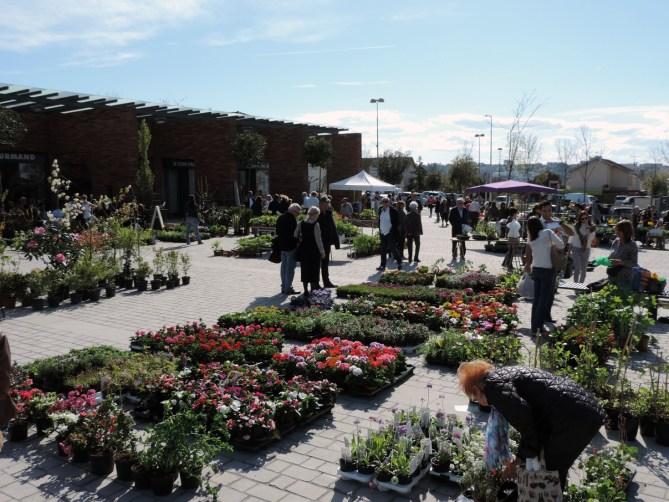 Balma - Marché aux fleurs - 10 avril 2016