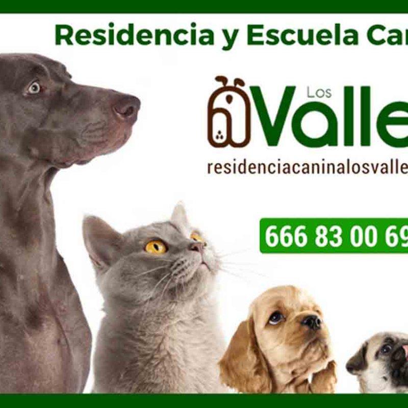 Residencia y Escuela Canina Los Valles