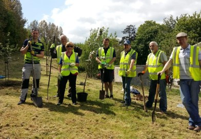 Planting of Community Orchard