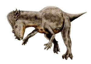 Pachycephalosaurus tekening