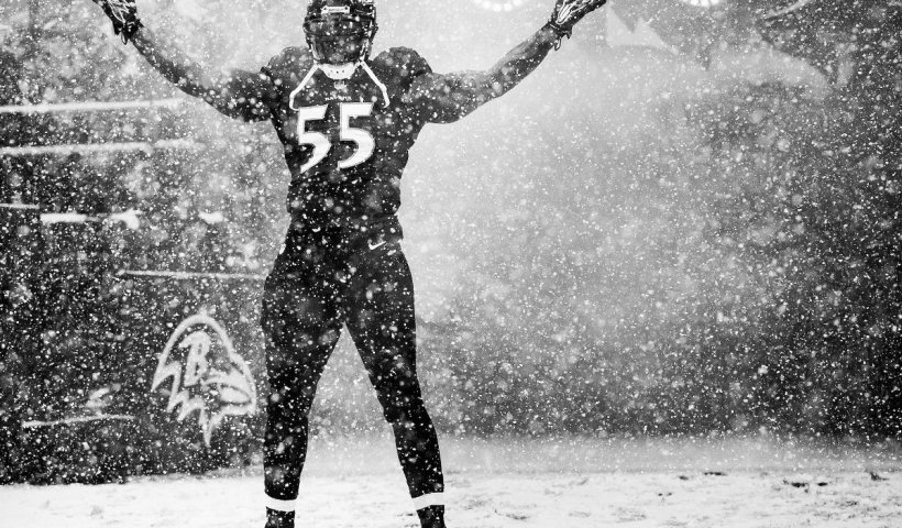 Ravens Snow Ravens Playoffs