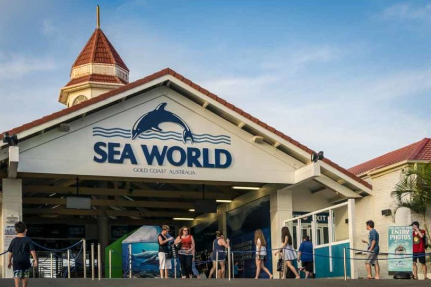 Opened in 1971, Sea World is a marine-mammal based theme park located right at the heart of Gold Coast.