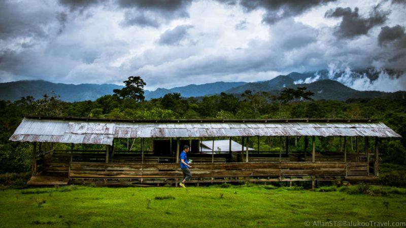 A city slicker's first ever trip to sheep farm. Bario (Sarawak, Malaysia)